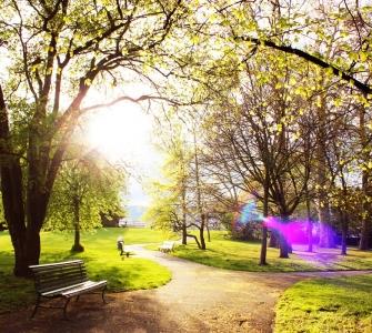 Taken in a park at Zurich Switzerland